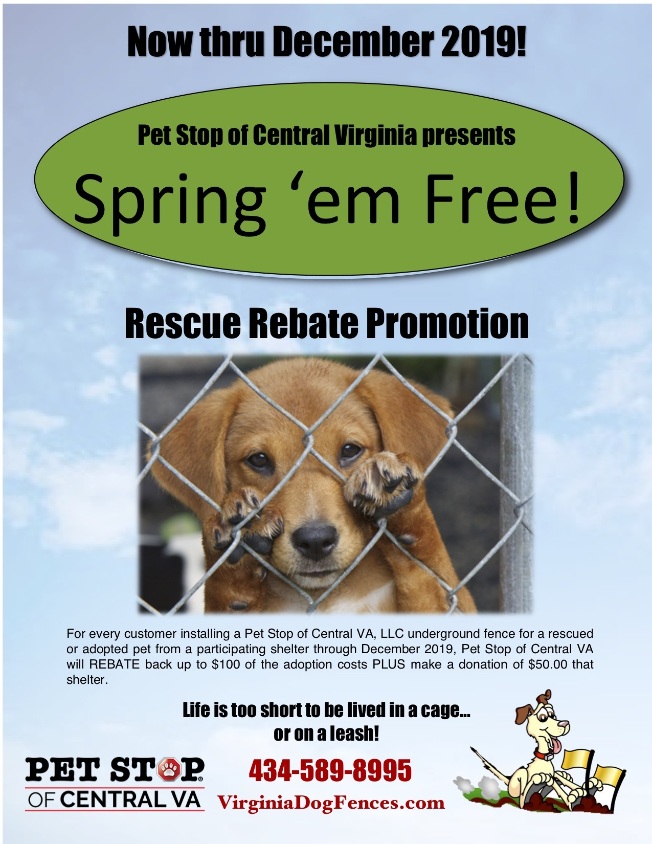 Electric Underground Dog Fencing in Central Virginia